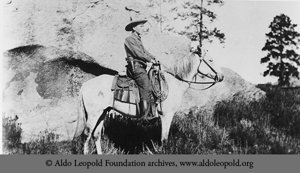 aldo leopolds hunting experience essay Aldo leopold, a wildlife they are able to experience both pleasure and pain it was an essay in aldo leopold's a sand county almanac.
