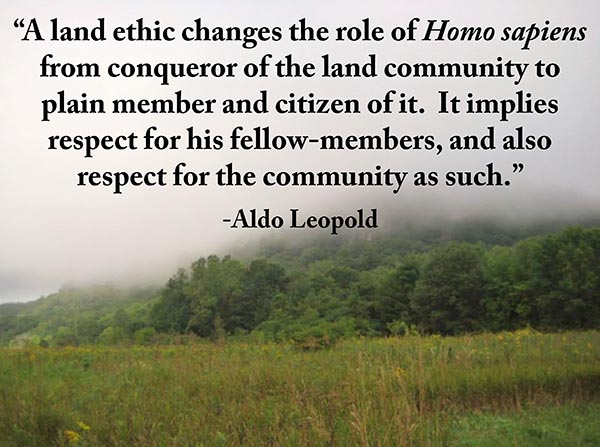 aldo leopolds land ethic essay Start studying biology and the environment learn vocabulary, terms, and more with flashcards, games aldo leopold's land ethic essay describes.